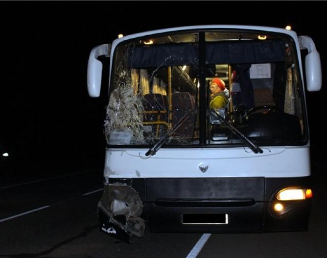 Шофёр автобуса насмерть сбил женщину вЗавьяловском районе