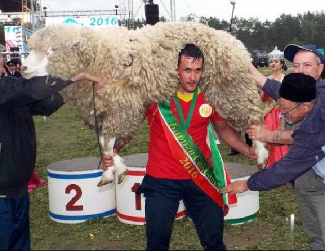 В нынешнем году народный праздник Сабантуй пройдет вКазани 15июля