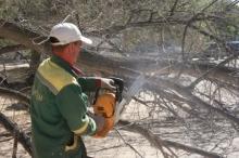 Национальный парк «Нижняя Кама» очищается