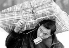 Пустят ли в город «Китайский рынок»?