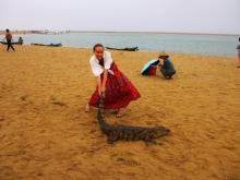 Пляж, море…крокодил