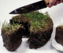 Земельный скандал в Набережных Челнах