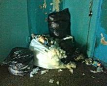 Цветы вперемешку с мусором