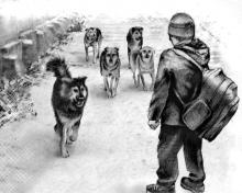 Собаки не пускают детей в школу