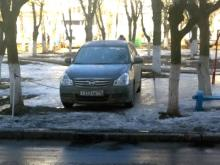 Водители, паркуясь на газоне, установили самовольные ограничители парковки