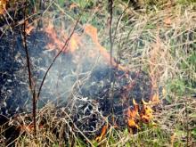 Челнинские пожарные потушили огонь в парке «Прибрежный»