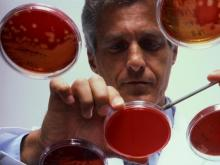 Продавца индийского препарата для лечения рака крови сняли с конкурса по правилу «Третий лишний»