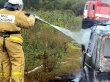Задержали поджигателей 3 автомобилей в  комплексе - им не удалось угнать эти машины