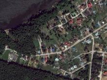 В поселке Белоус под коттеджи вырубаются 2 гектара леса без компенсационных выплат