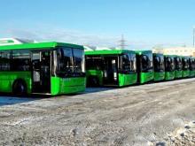 «РариТЭК» приготовил автобусы «Нефаз» для обслуживания чемпионата мира по футболу - 2018