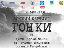 Кубок от команды 'КАМАЗ-Мастер' разыграют в выходные дни на картодроме в Набережных Челнах