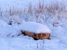 Из-за снежного бездорожья в Башкирии гроб с покойником три дня пролежал на обочине дороги
