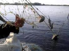 В информсистеме  'Народный контроль' в Татарстане можно пожаловаться на рыбаков-браконьеров