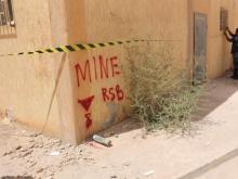 Частные саперы из России разминировали завод в Ливии за несколько миллионов долларов