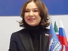 Альфия Когогина выступила за изменения в законе о госзакупках, чтобы Россия лучше защищалась в судах