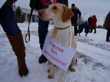 На организатора пикета в защиту животных в Набережных Челнах составили протокол