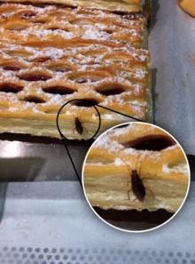 Тараканы на десерт