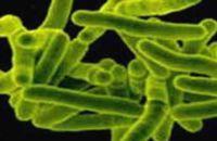 Ротавирусная инфекция в детском саду