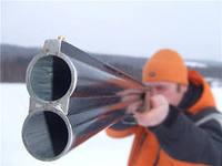 Отстрел собак в Набережных Челнах