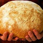 Водитель облапал хлеб для детей.